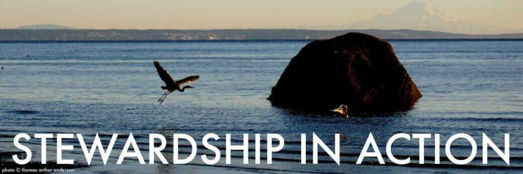 Stewardship in Action