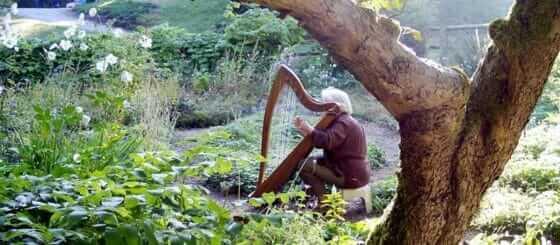 HarpHeader