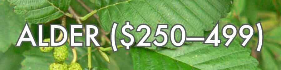 Alder ($250–499)